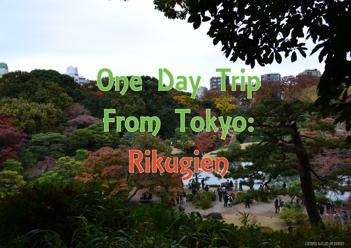 Visiting Rikugien In Autumn 六義園