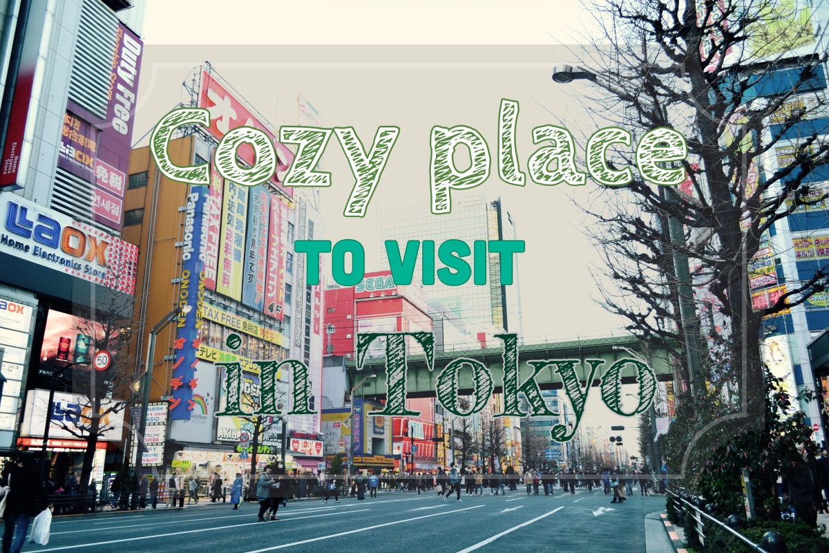 Cozy Place to Visit in Tokyo