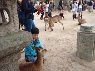 A kid with a doe
